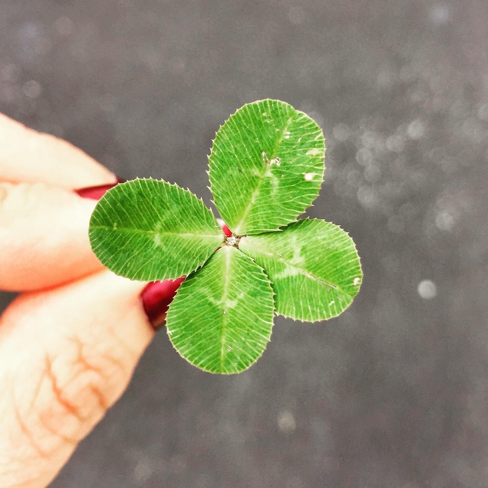 勇気がいるけど幸運を引き寄せる5つの秘訣